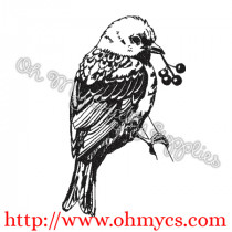 Sketch Bird on a Branch Embroidery Design