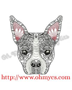 Henna Boston Terrier Picture