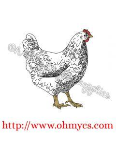 A Farm Hen Sketch Embroidery Design